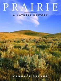 prairie - a natural history