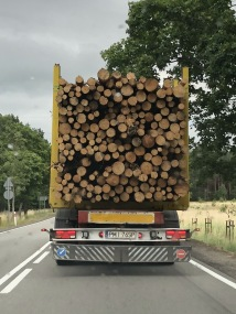 Skinny reddish logs